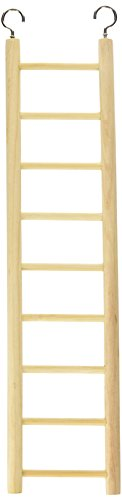 Living World Wooden Ladder, 9 Step