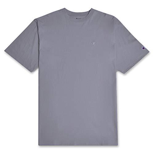 Champion Big and Tall Mens Vintage Wash Short Sleeve T Shirt Concrete 2XT