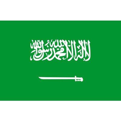 サウジアラビア国旗(120cm×180cm)   B00EC0V0WQ
