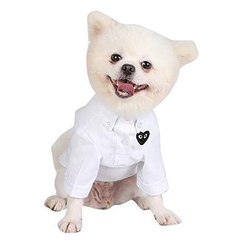 - Dog Clothes T-Shirt Pure Button Down Two-Legged Cool Cute Shirts Pet Apparel (M, White)