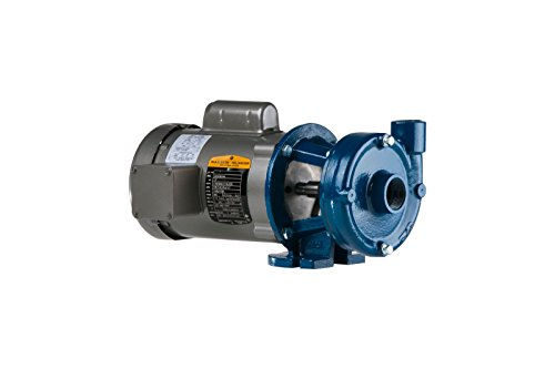 Price Pump CD150AI-494-6A111-300-36-1D6 Close Coupled Horizontal and Vertical Centrifugal Pumps, 3HP, Max 170 GPM, ODP Motor Enclosed, 170 GSM Maximum Flow Rate, Cast Iron