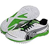 PUMA Complete Haraka XC Spikeless, Color:White/Green, 14 D