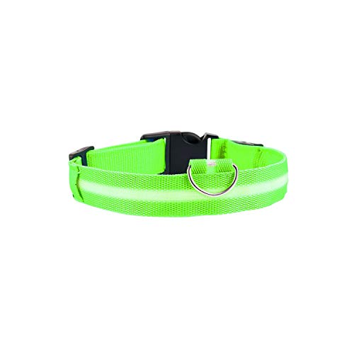 Tuyhnm Night Safety Glowing Nylon Pet Dog Collar Pet Supplies Cat Dog Collar Pet Accessories,Green,XL -