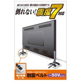 【まとめ 2セット】 エレコム TV用耐震ベルト/~50V用/強力粘着シールタイプ/4本入 TS-004N2   B07KNSDC9F