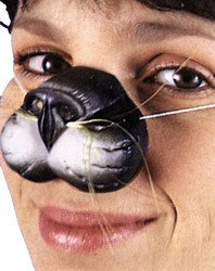 Animal nose mini mask - black (Animal Nose Masks)