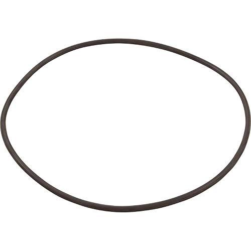 Filter Head O-ring - Hayward CXFHR1001 O-Ring for Filter Head