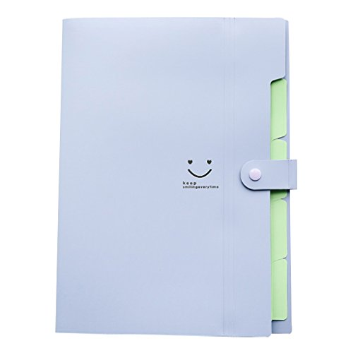 Small Plastic Pastel - Skydue Letter A4 Paper Expanding File Folder Pockets Accordion Document Organizer (Purple)