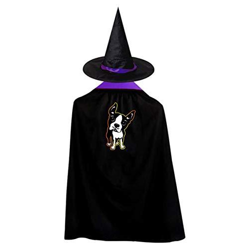Halloween Children Costume Boston Terrier Dog Wizard Witch Cloak Cape Robe And Hat Set