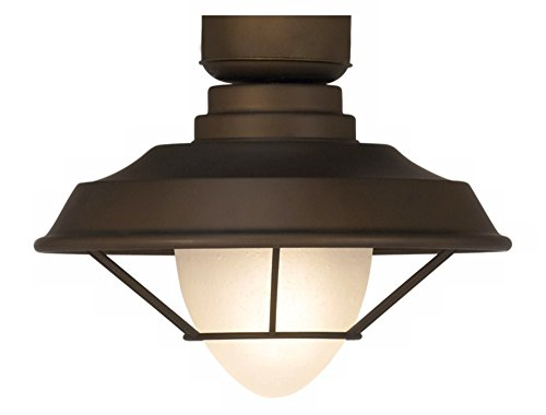 Casa Vieja Bronze Outdoor Ceiling Fan Light Kit (Kit Outdoor Light Fan)