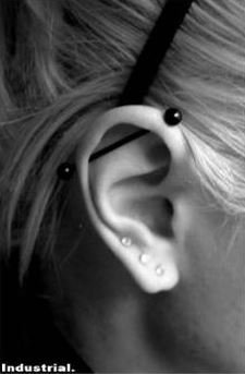 a74c722cd Amazon.com: Industrial Barbell Piercing, Straight Black Jewelry, Upper Ear  Piercing, Tragus, Conch: Everything Else