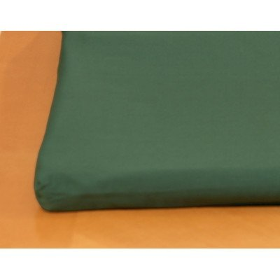 Canine Cooler Covers (Canine Cooler Cool Cushion Cover Size: Medium, Color: Green)