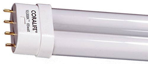 (50/50 Compact Fluorescent Straight Pin Base Lamp)