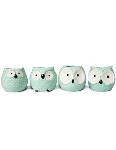 Dahlia Cute Mini Owls Ceramic Succulent Planter/Plant Pot/Flower Pot, Turquoise Set of 4