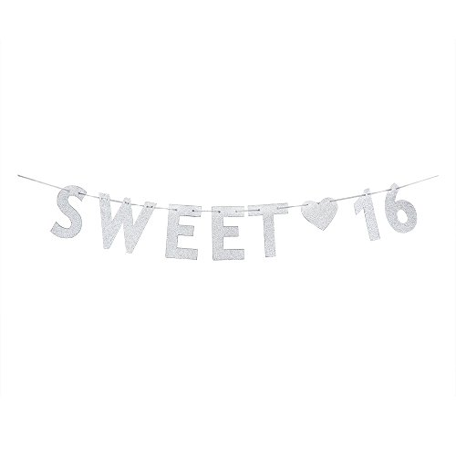 WeBenison Silver Sweet 16 Birthday Banner – 16th Wedding Anniversary Party Decoration Bunting Photo Props, Party Favors, Supplies, Gifts, Themes and Ideas for $<!--$9.99-->