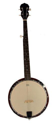 5-String BANJO - REMO Head 38