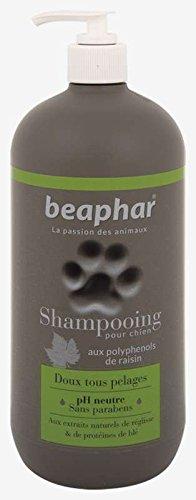 Beaphar - Champú Premium para perros, 750 ml