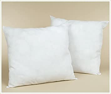Amazon.com: Set of Two Feather/Down EURO Pillow Form Cushion , 12 ...