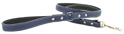 Tuscany Dog Leash color  bluee, Size  0.5  x 72