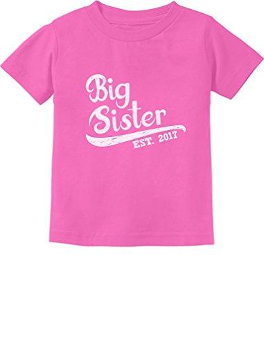 TeeStars - Big Sister Est 2017 - Sibling Gift Idea Toddler/Infant Kids T-Shirt 3T Pink
