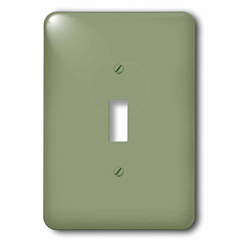 3dRose lsp_159859_1 Moss Green Greenish Grey Gray Muddy Plain Simple One Single Solid Color Brown-Green Sage Single Toggle Switch