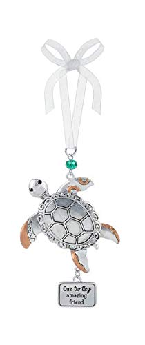 Ganz One Turtley Amazing Friends Hanging Ornament