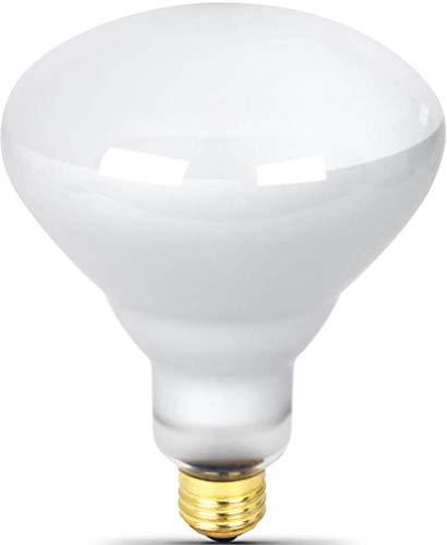 300 Watt Flood Light Bulb