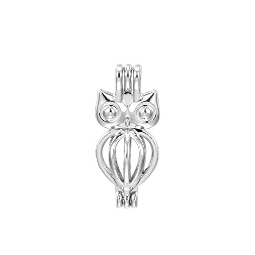 10pcs Owl Shape Charm Locket Rhodium Plated Bead Cage Hollow Locket Charm Pendant - Add Your Own Stones, Rock to Cage,Add Perfume and Essential Oils to Create a Scent Diffusing Charms (Owl Style)