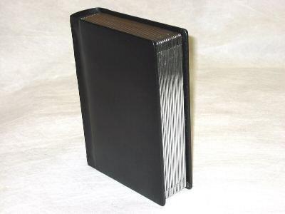 (Professional 4x6 Black Silver Edged Slip-in Wedding/Parent Photo Album holds 60)