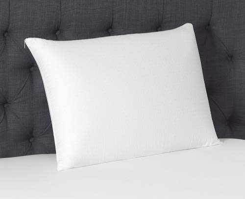 Beautyrest King - Beautyrest Latex Foam Pillow (King 2 Pack)