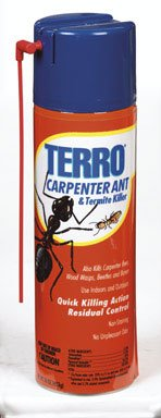 Best Product To Kill Ants In Kitchen