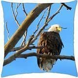 Eagle Spotted - Throw Pillow Cover Case (18