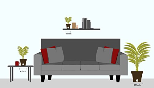 Costa Farms Snake Plant, Sansevieria, with 4.25-Inch Wide Mid-Century Modern Planter and Plant Stand Set, White, Fits on Shelves/Tabletops by Costa Farms (Image #3)