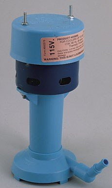 Little Giant CP1-115 540005 Cooler Pump, SEE PICTURE by LITTLE GIANT