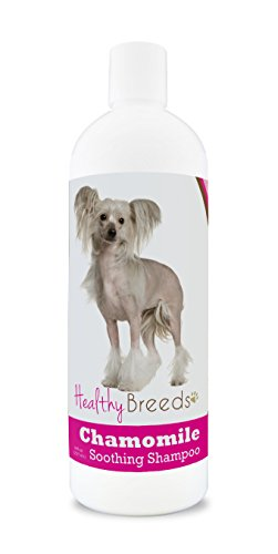 Chinese Crested Dog Skin Care