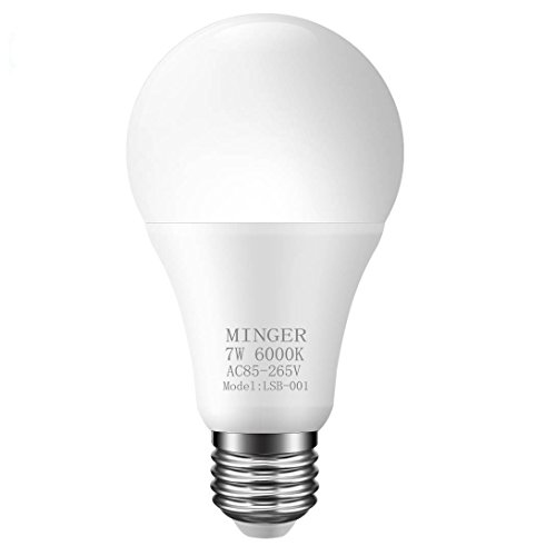 Led Bulb Light Sensor in Florida - 4
