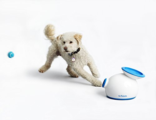 iFetch Interactive Ball Launcher for Dogs – Launches Mini Tennis Balls, Small by iFetch