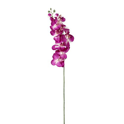 1 x Artificial Butterfly Orchid Flower Plant Home Decor Fuchsia