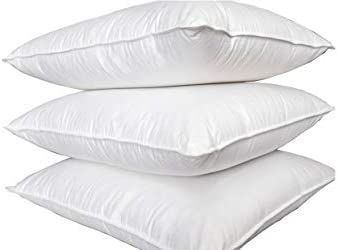 Blanco 40 x 80 cm o 80 x 80 cm cumple la norma /Öko-Tex 100/% algod/ón 100 /% natural Almohada de plum/ón /_weiss 40x40 cm con distintos rellenos de 40 x 40 cm 300 gr