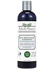 SynergyLabs Richard's Organics Anti-Bacterial Shampoo for Dogs – Formulated with Tea Tree Oil and Neem Oil - 100% Natural Active Ingredients Shampoo to Treat Fungal, Bacterial and Yeast Skin Infections in Dogs (12 oz.)