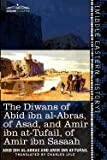 The Diwans of Abid Ibn Al-Abras, of Asad, and Amir Ibn At-Tufail, of Amir Ibn Sasaah, Abid Ibn Al-Abras and Amir Ibn At-Tufail, 1616405392