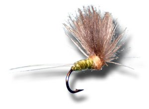 - CDC Biot Comparadun - BWO Fly Fishing Fly - Size 14 - 3 Pack