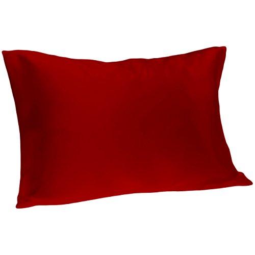 Spasilk 100% Silk Pillowcase Queen Size, ()