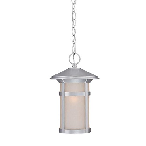 Acclaim 39106BS Phoenix Collection 1-Light Outdoor Light Fixture Hanging Lantern, Brushed Silver by Acclaim