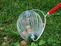 Almond Harvester with Flip-Up Basket buy in Jacksonville