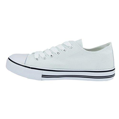 Logan up Pierre 1 Canvas Women's Fashion Dumas Lace White Sneakers wxqEx4