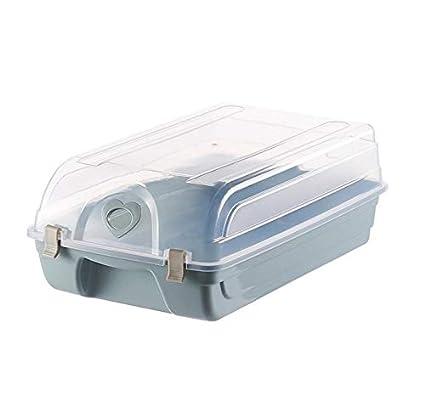 Zhicaikeji Caja de zapatos Caja de almacenamiento de plástico ...