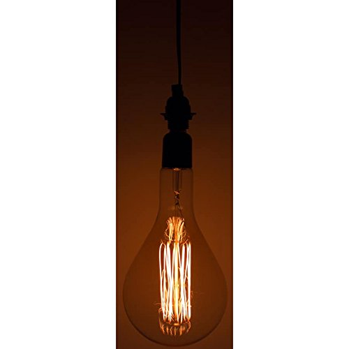 String Light Company 160F2P Hanging Single Socket Pendant 60W Light with 10' Black Cord and Vintage Bulb ()