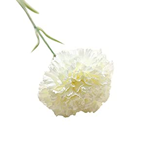 MARJON FlowersNew Simulation Real Natural Babysbreath Artificial Fake Flowers Carnations Floral Wedding Cemetery Bouquet Party Festival Office Table Home Decoration Perfect for Outdoors Crafts 23