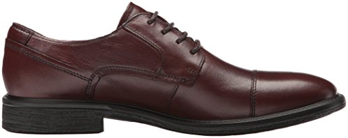 Uomo Whisky Scarpe Knoxville ECCO Stringate Marrone 4qXntWWFH