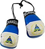 SUPERDAVVES SUPERSTORE Nicaragua Country Flag Mini Boxing Gloves to Hang Over Your Automobile Mirror New